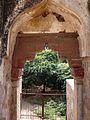 Wall Mosque 006.jpg