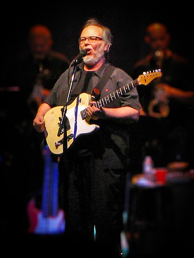 Picture of a band or musician: Walter Becker