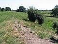 Wat's Dyke near Northop - geograph.org.uk - 202714.jpg