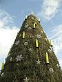 Weihnachtsbaum-Do-2011-785.jpg