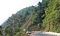Western Ghats Vegetation - View en route Kottiyoor to Mananthavady14.jpg