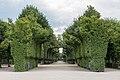 Wien, Schloss Schönbrunn, Schlossgarten -- 2018 -- 3254.jpg
