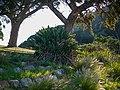 Wikimania 2018, Cape Town ( 1050372).jpg