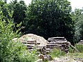 Wilton Forestry - geograph.org.uk - 193205.jpg