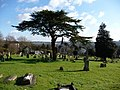 Winchester - West Hill Cemetery - geograph.org.uk - 1158483.jpg