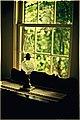 Window Light at Uncle Tom's Cabin (5019207678).jpg