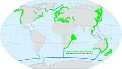 World map ocean genus-Zostera.jpg