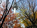 Yongsandong 2(i)-ga, Yongsan-gu, Seoul, South Korea - panoramio (5).jpg