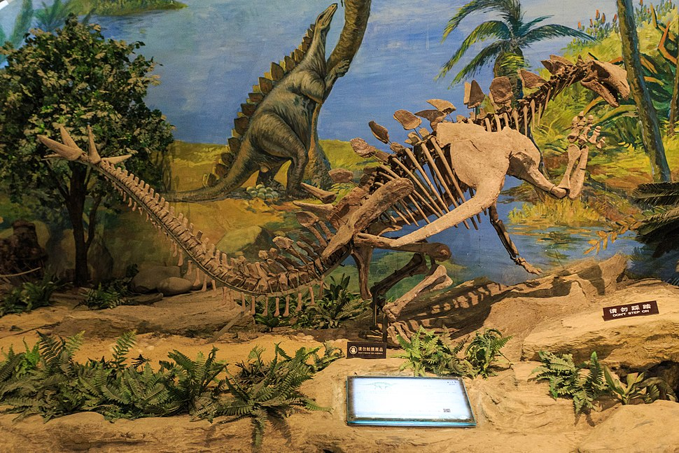 Zigong Dinosaur Museum Gigantspinosaurus