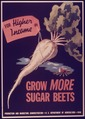 """Grow More Sugar Beets"" - NARA - 514423.tif"