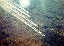 Vietnam. Missione di disboscamento durante l'operazione Ranch Hand (guerra del Vietnam)