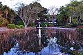 (1)Sydney Botanical Gardens-1.jpg