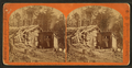 (Woman stands in doorway of log cabin) on the Northern Pacific Road, by Childs, B. F..png