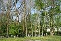 Антопіль парк 1.jpg
