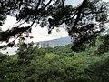 Вид на Ялту из Никитского ботанического сада - panoramio (1).jpg