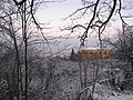 Вид на северо-восток с Пулковского холма (The view to north-east from the Pulkovo hill) - panoramio.jpg