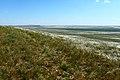 Вид с горы Даминтау в южном направлении - panoramio (1).jpg