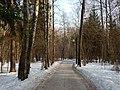 В Зеленоградском лесопарке - panoramio.jpg