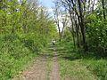 Дендрологічний парк 130.jpg