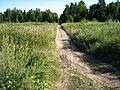 Дорога на поле рядом с парком Зверинец - panoramio.jpg