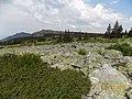 Иремель. Течет каменная река.jpg