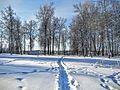 Кашин, Горсад - panoramio (35).jpg