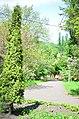 Наводницкий парк в Киеве. Фото 17.jpg
