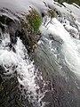 Парк природе Ријека Уна 97.jpg