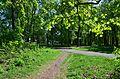 Парк - panoramio (230).jpg