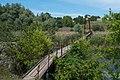 Пішохідний міст через Рось у Дешках.jpg