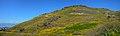 אתר סוסיתא בשיא הפריחה ברמת הגולן.jpg
