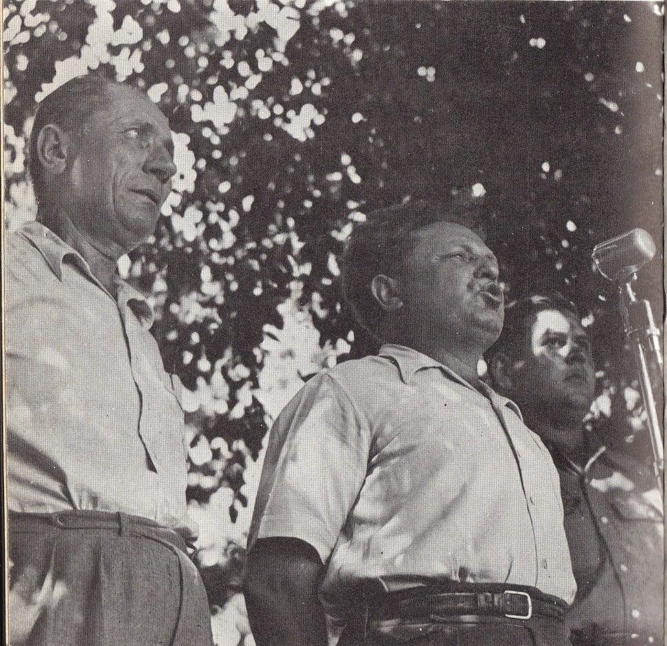 ישראל גלילי ודוד כהן