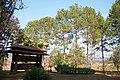 อุทยานแห่งชาติทุ่งแสลงหลวง Thung Salaeng Luang National Park - panoramio - Thaweesak Churasri (11).jpg