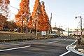 ときの広場 - panoramio (1).jpg