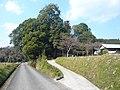 五條市霊安寺町 熊野神社 Kumano-jinja, Ryōanji-chō 2011.3.31 - panoramio (1).jpg