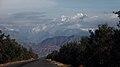 去塔克拉克牧场的路上 - panoramio (1).jpg
