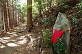 地蔵さん登山道 十八丁 Ojizō-san(Ksitigarbha image) on the mountain trail 2013.1123 - panoramio.jpg
