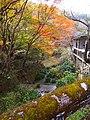 岩屋堂公園 (愛知県瀬戸市岩屋町) - panoramio (1).jpg