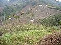 慶福里,自海拔817米,向東看大茅埔山腳 - panoramio.jpg