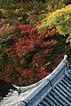 日本京都寺院23.jpg