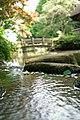 東高根森林公園 - panoramio (10).jpg
