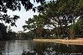 深圳市罗湖区洪湖公园 hong hu gong yuan - panoramio.jpg