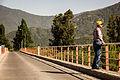 005-365 - Puente La Gloria (11783344453).jpg