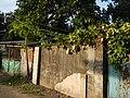 0169jfSabang Chapels Caingin Pantubig San Rafael Plants Bulacanfvf 39.JPG