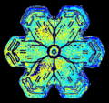 07 snowflake colorized early experimental digital photography by Rick Doble.png