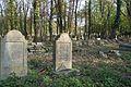 1477viki Cmentarz żydowski przy ul. Lotniczej. Foto Barbara Maliszewska.jpg