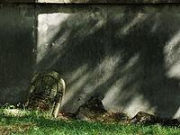 1734 cmentarz żydowski Ostrowiec Świętokrzyski 2.JPG