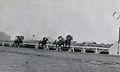 1956 nippon derby.jpg