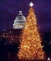 1998 U.S. Capitol Christmas Tree (31805188275).jpg