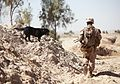 1st LAR Marines patrol through Sre Kala, disrupt enemy activity 120305-M-PH863-032.jpg